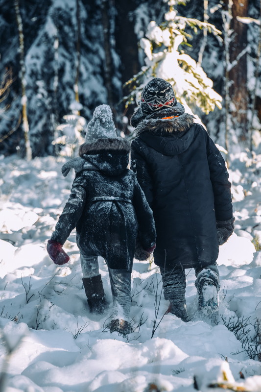 bērni, ziema, sniegs, mežs, piesnidzis mežs, kupenas, sals, egles, skuju koki, apsnidzis, apsnigusi, children, winter, snow, forest, pine forest, dumplings, frogs, cribs, conifers, fallacy, snowdening, Anita Austvika